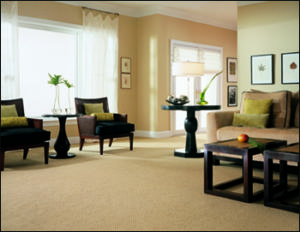 carpetroom